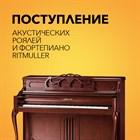 Поступление акустических роялей и фортепиано Ritmuller