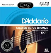 D'ADDARIO EXP / 11