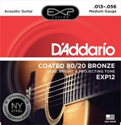 D'ADDARIO EXP / 12