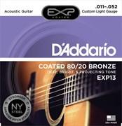 D'ADDARIO EXP / 13