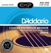D'ADDARIO EXP / 16