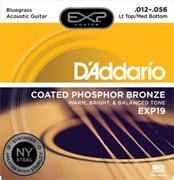 D'ADDARIO EXP / 19