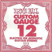 Ernie Ball P01012